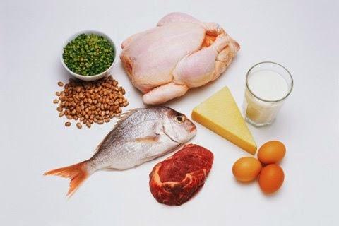 protein icerikli besinler