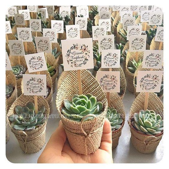 kaktus mini hediyelik onerileri