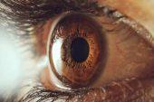 Göz Tansiyonu Nedir? Glokom Belirtiler ve Tedavi Yöntemleri